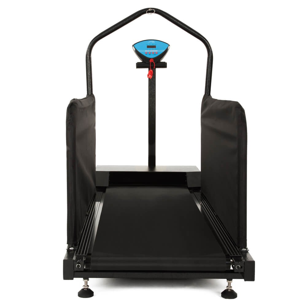 back view of the DogRunner's Large treadmill