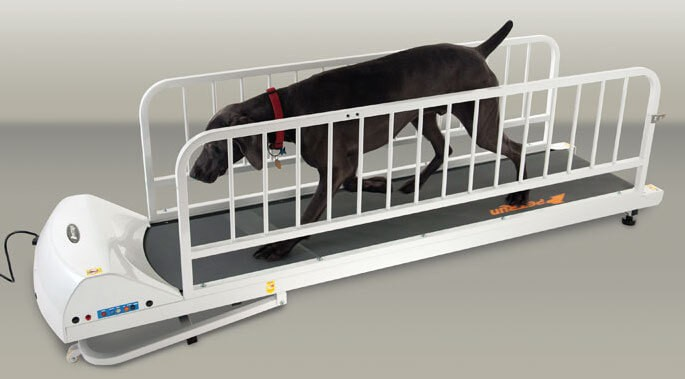 the GoPet PR725 is the most secure large dog treadmill thanks to its metal side railings